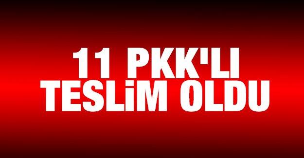 11 PKK'lı teslim oldu!