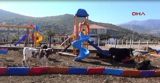 Seçim çalışması çocuksuz mahalleye ikinci parkı getirdi