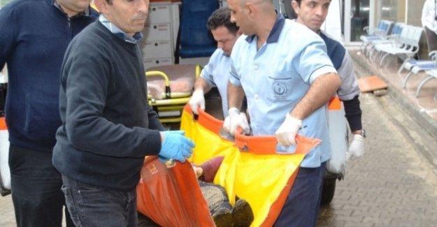 Foça'daki mülteci faciasında ölü sayısı 13 oldu