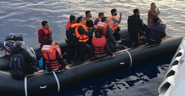 Antalya'da 15 kaçak göçmen yakalandı