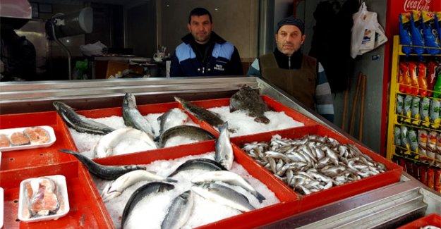 Hava ısındı balık fiyatları düştü