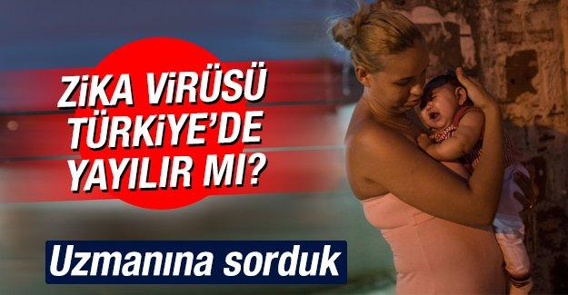 Zika virüsü Türkiye'de yayılır mı?