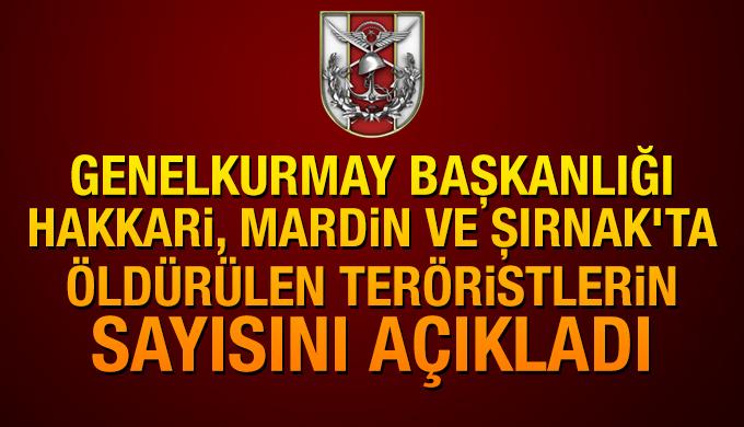 TSK: Mardin, Hakkari ve Şırnak'ta 262 terörist öldürüldü