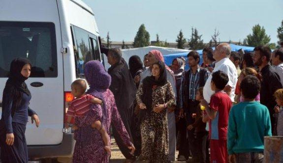 Adana'da dilenen 230 Suriyeli yakalandı