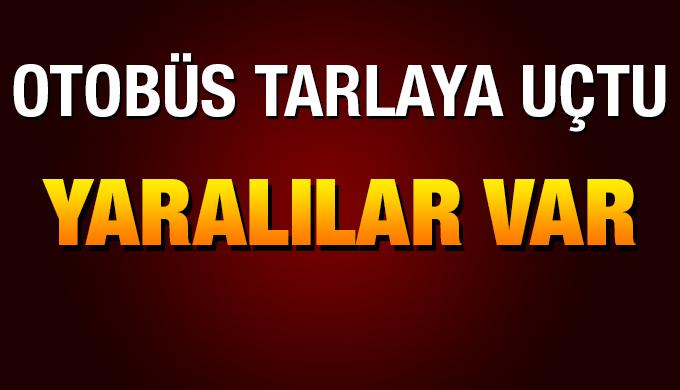 Yolcu otobüsünün tarlaya devrilmesi sonucu 21 kişi yaralandı