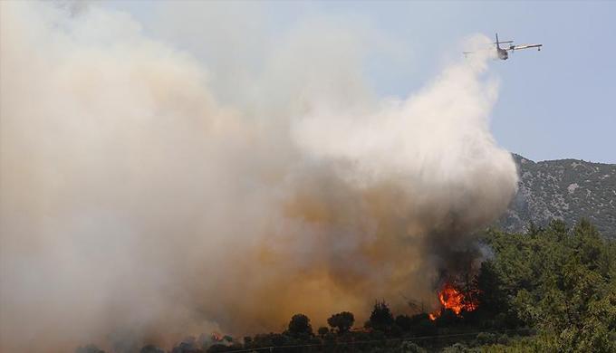 Bakan Eroğlu'dan Antalya'daki Orman yangınına ilişkin açıklama