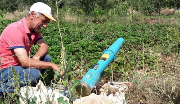 Domuzsavar çiftçilerin umudu oldu
