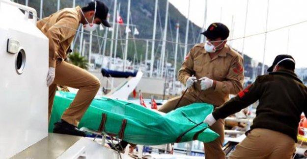 Ada açıklarında 2 ceset bulundu