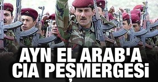 Ayn El Arab'a CIA peşmergesi