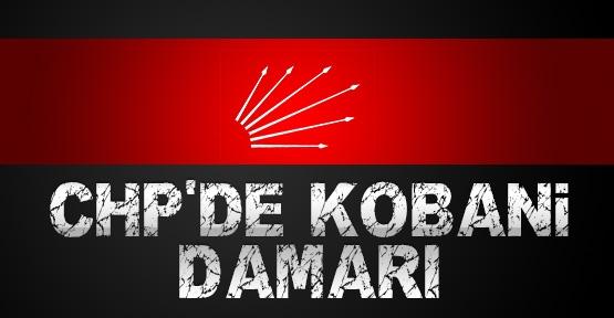 CHP'de Kobani damarı