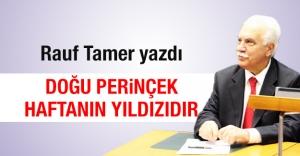 Rauf Tamer yazdı: Doğu Perinçek haftanın yıldızıdır