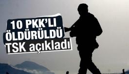 Sur ve İdil'de 10 PKK'lı etkisiz hale getirildi